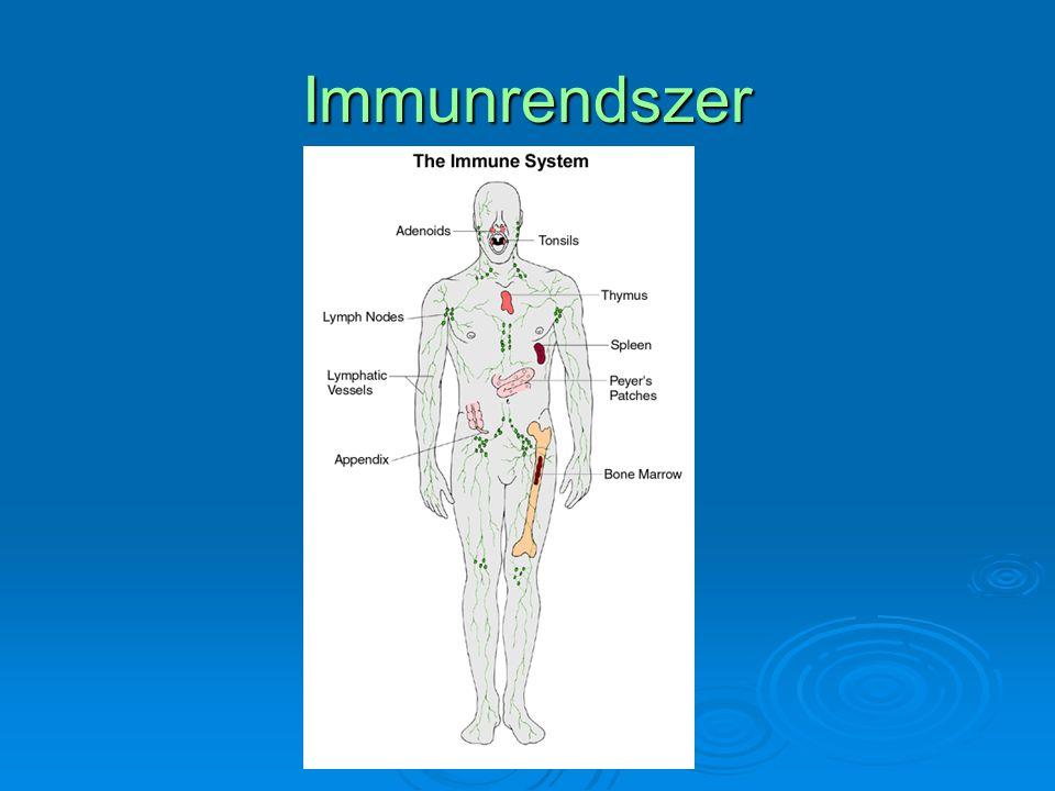 Immundeficiencia klinikai jelei II.