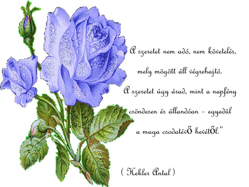 """"""" Az apró örömök olyanok mint az útszéli kis virágok, csak azok találnak rájuk, Akik igazán keresik ő ket."""""""