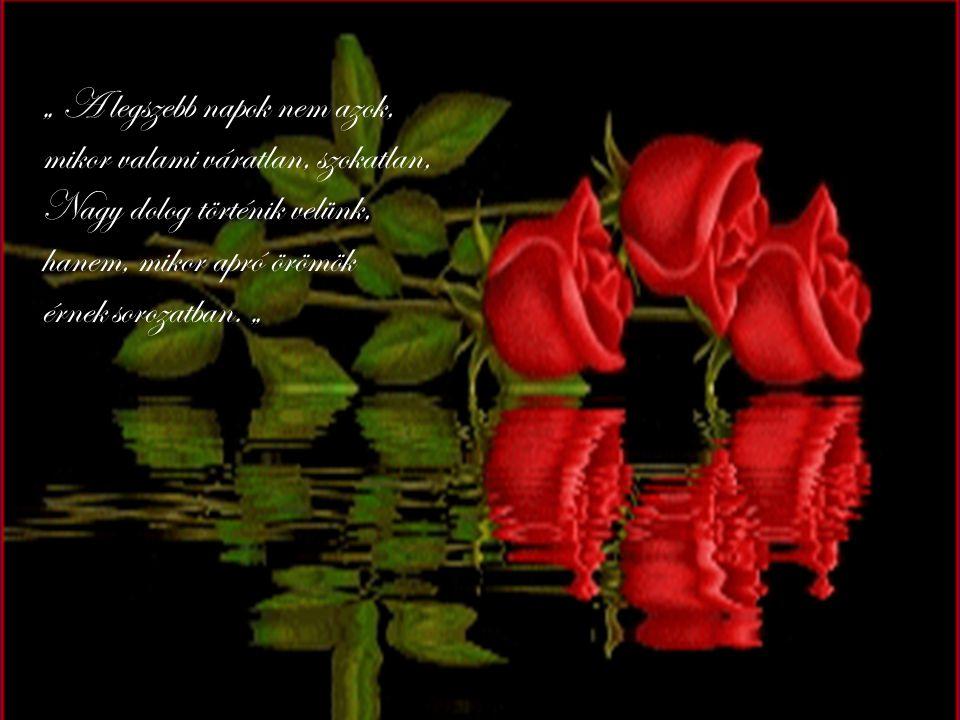 Szívem mélyén elhervadt már minden virág, De megtanultam, mit jelent egy igaz barát Ha bajban vagyok, elég az, ha rá gondolhatok Hisz nélküle már nem