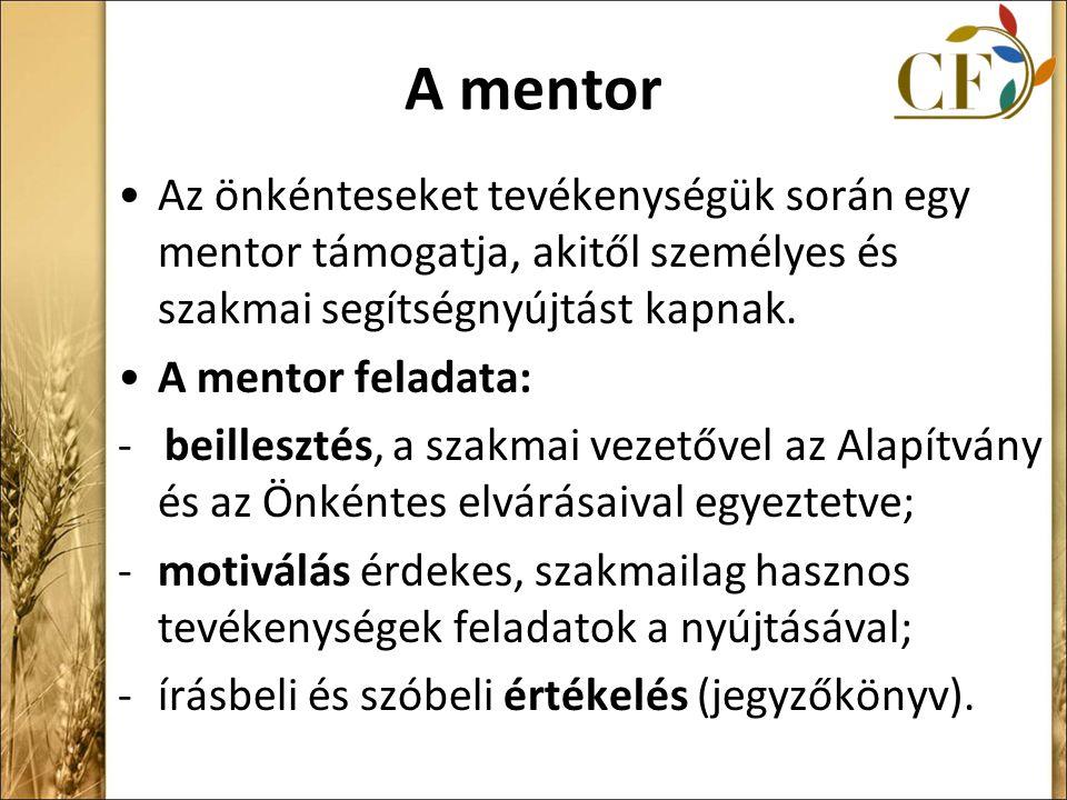 A mentor Az önkénteseket tevékenységük során egy mentor támogatja, akitől személyes és szakmai segítségnyújtást kapnak.