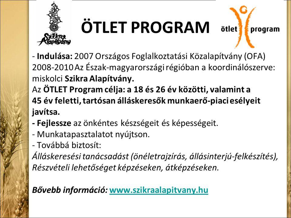 ÖTLET PROGRAM - Indulása: 2007 Országos Foglalkoztatási Közalapítvány (OFA) 2008-2010 Az Észak-magyarországi régióban a koordinálószerve: miskolci Szikra Alapítvány.