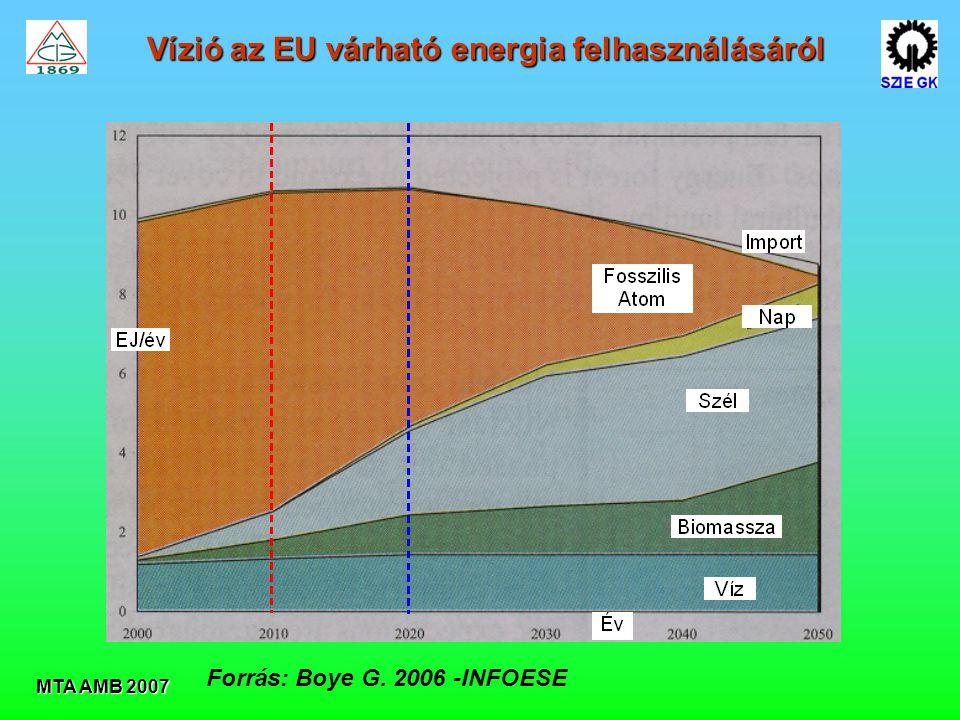 MTA AMB 2007 Forrás: Boye G. 2006 -INFOESE Vízió az EU várható energia felhasználásáról