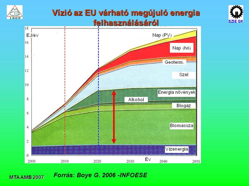 MTA AMB 2007 Vízió az EU várható megújuló energia felhasználásáról Forrás: Boye G. 2006 -INFOESE