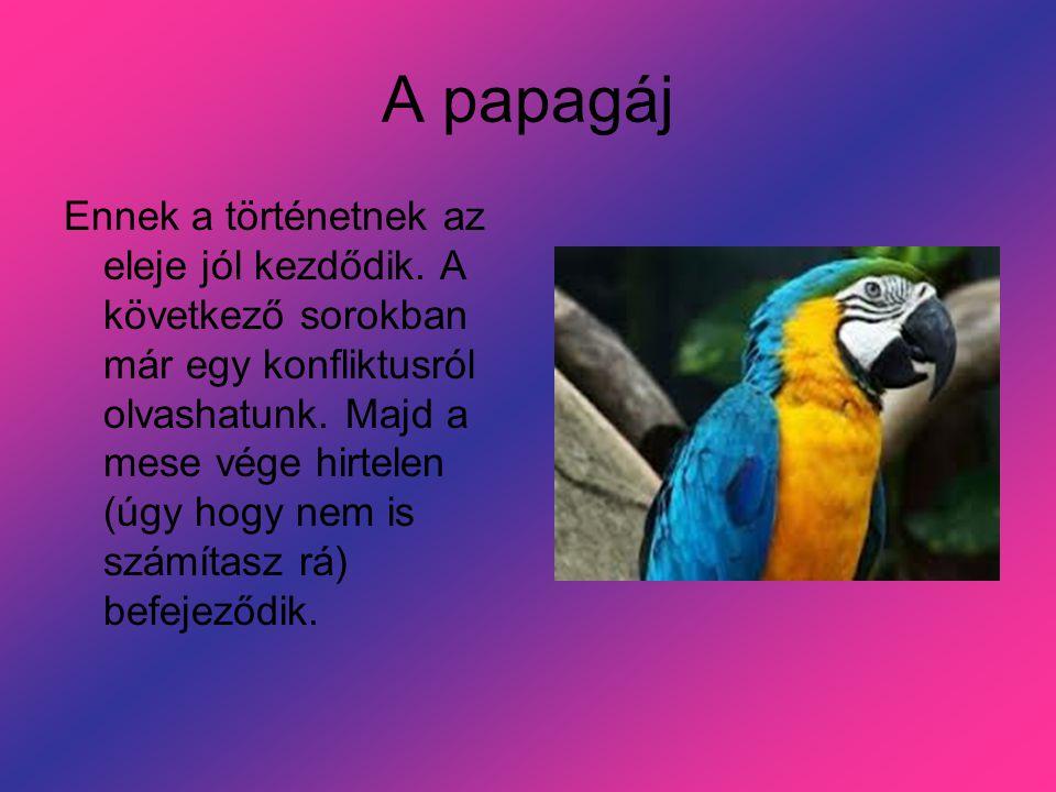 A papagáj Ennek a történetnek az eleje jól kezdődik.