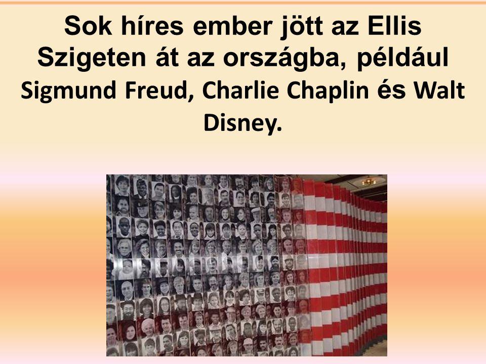 A múltban az Ellis Sziget volt a bevándorlók első állomása ahol kb. 17 milli ó bevándorló lépett be az országba.