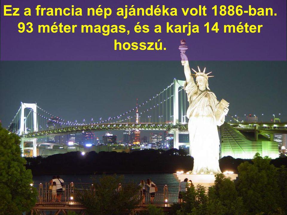 Ez a francia nép ajándéka volt 1886-ban. 93 méter magas, és a karja 14 méter hosszú.