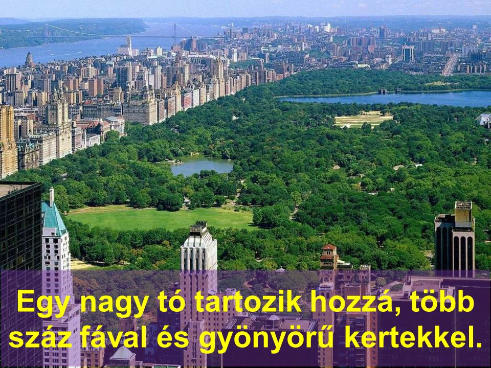 A Central Park Manhattan 6%- án terül el.