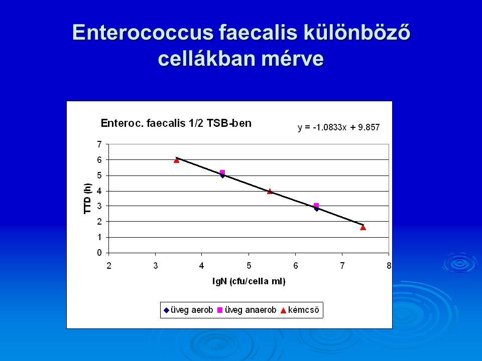 Enterococcus faecalis különböző cellákban mérve