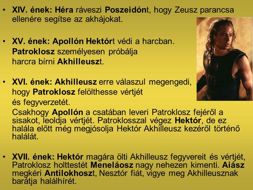 XIV. ének: Héra ráveszi Poszeidónt, hogy Zeusz parancsa ellenére segítse az akhájokat. XV. ének: Apollón Hektórt védi a harcban. Patroklosz személyese