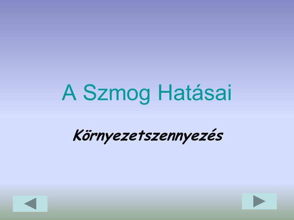 Jan.11-én 11 órakor életbe lépett Budapesten a Szmogriadó, - egyelőre inkább elméleti korlátozás az autósokra nézve. Az egyszerű rendszámelvnél jóval