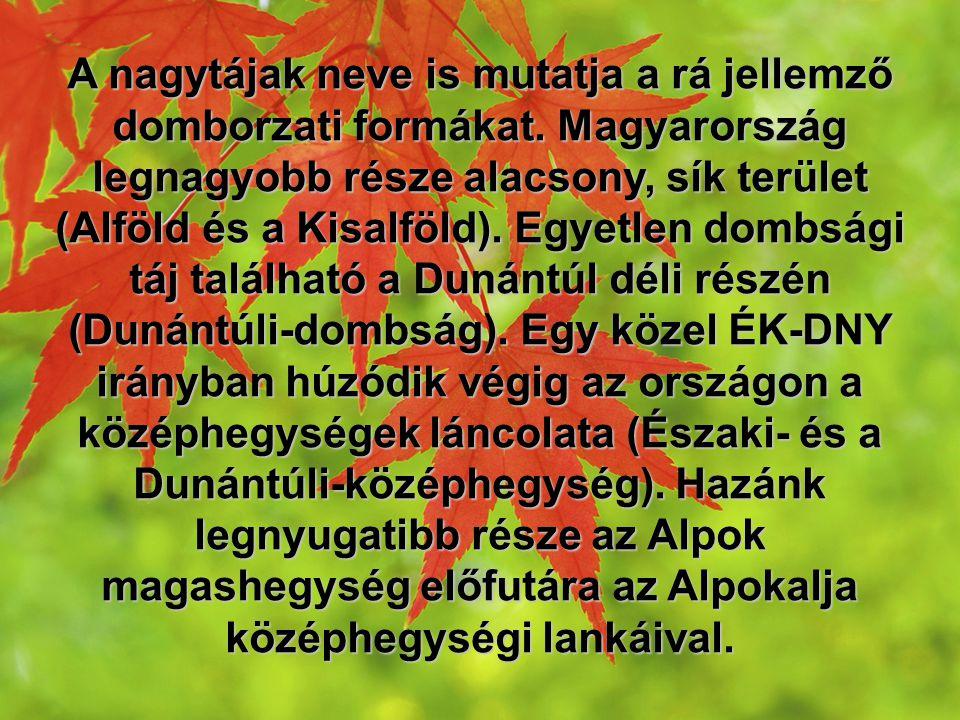A nagytájak neve is mutatja a rá jellemző domborzati formákat. Magyarország legnagyobb része alacsony, sík terület (Alföld és a Kisalföld). Egyetlen d