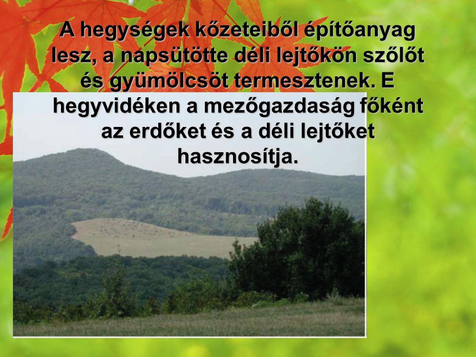 A hegységek kőzeteiből építőanyag lesz, a napsütötte déli lejtőkön szőlőt és gyümölcsöt termesztenek. E hegyvidéken a mezőgazdaság főként az erdőket é