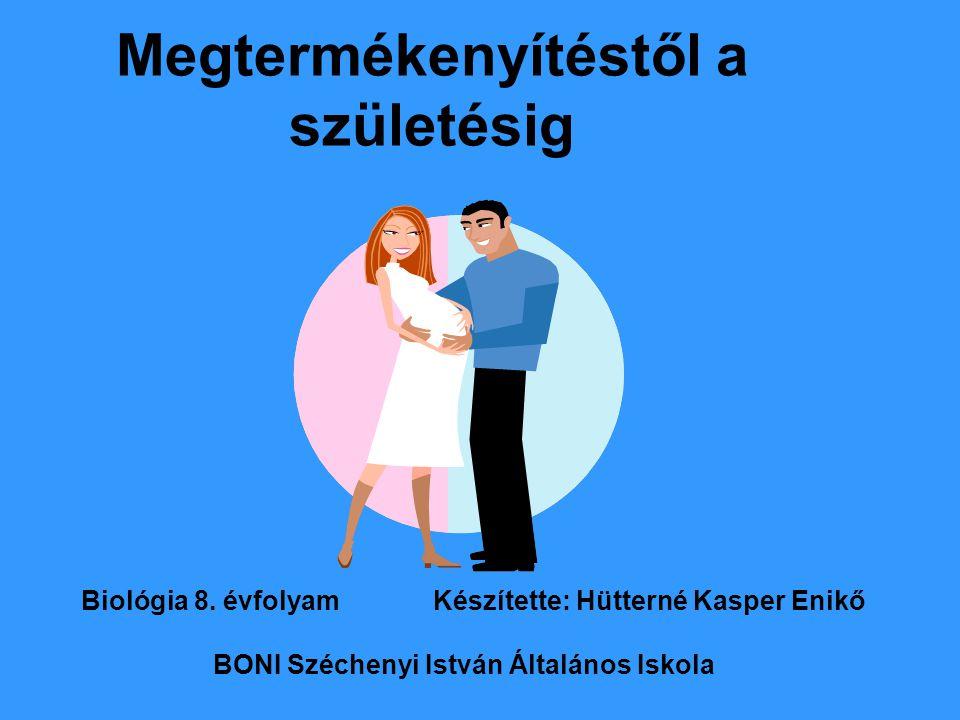 Megtermékenyítéstől a születésig Biológia 8. évfolyam Készítette: Hütterné Kasper Enikő BONI Széchenyi István Általános Iskola