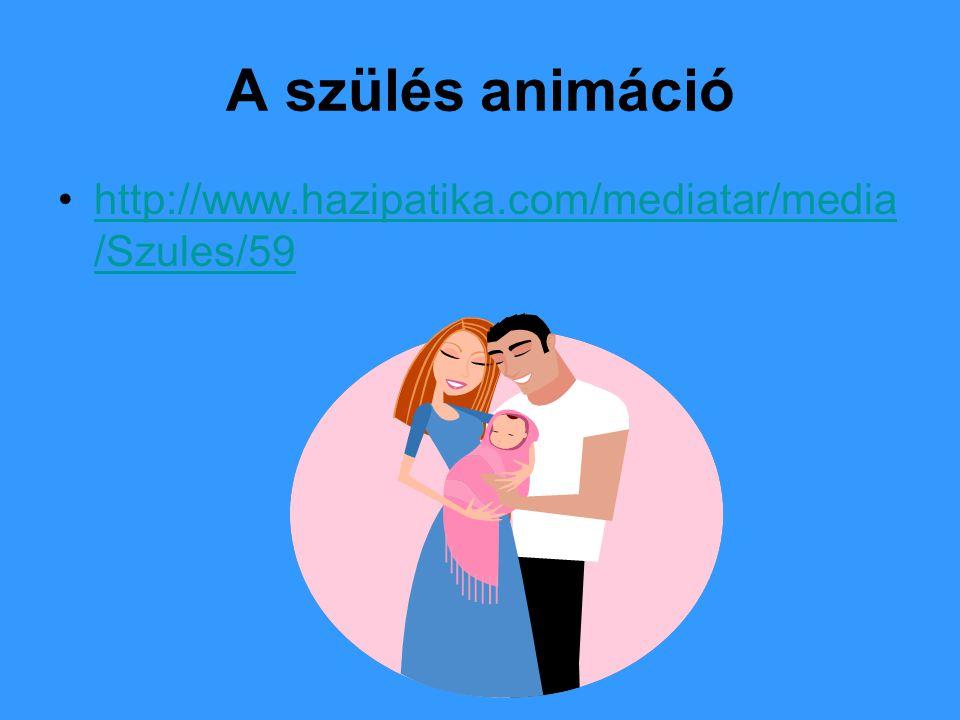 A szülés animáció http://www.hazipatika.com/mediatar/media /Szules/59http://www.hazipatika.com/mediatar/media /Szules/59