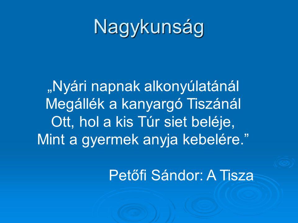 """Nagykunság """"Nyári napnak alkonyúlatánál Megállék a kanyargó Tiszánál Ott, hol a kis Túr siet beléje, Mint a gyermek anyja kebelére."""" Petőfi Sándor: A"""