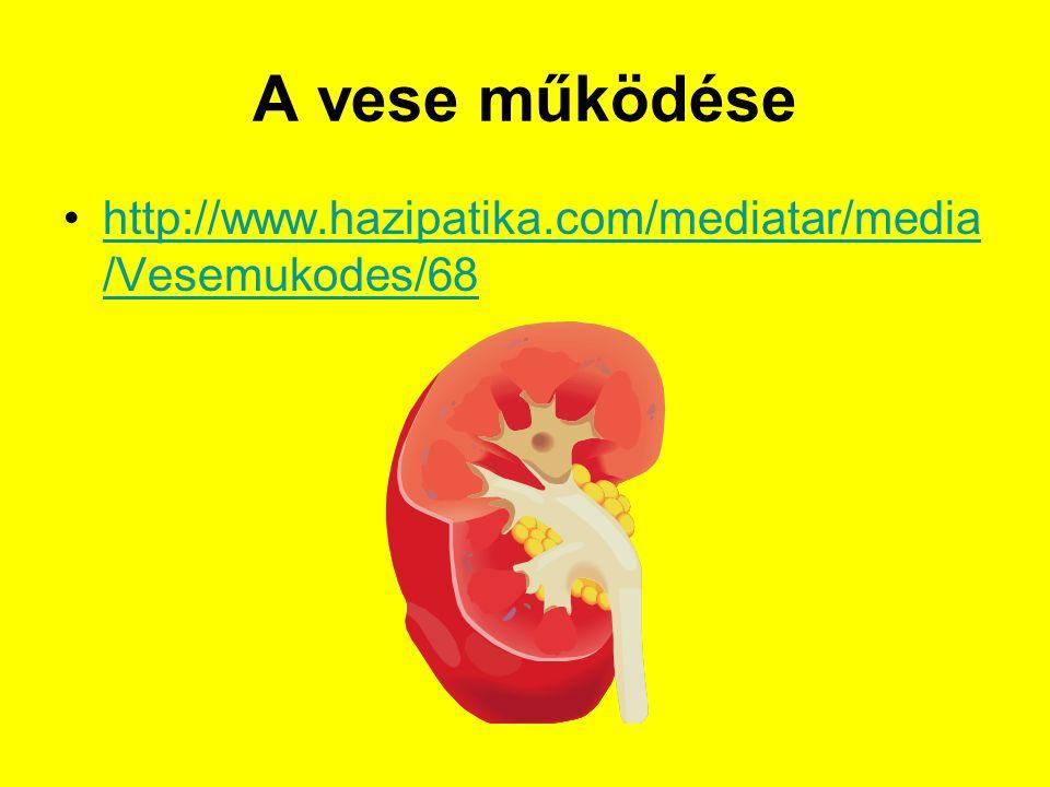A vese működése http://www.hazipatika.com/mediatar/media /Vesemukodes/68http://www.hazipatika.com/mediatar/media /Vesemukodes/68