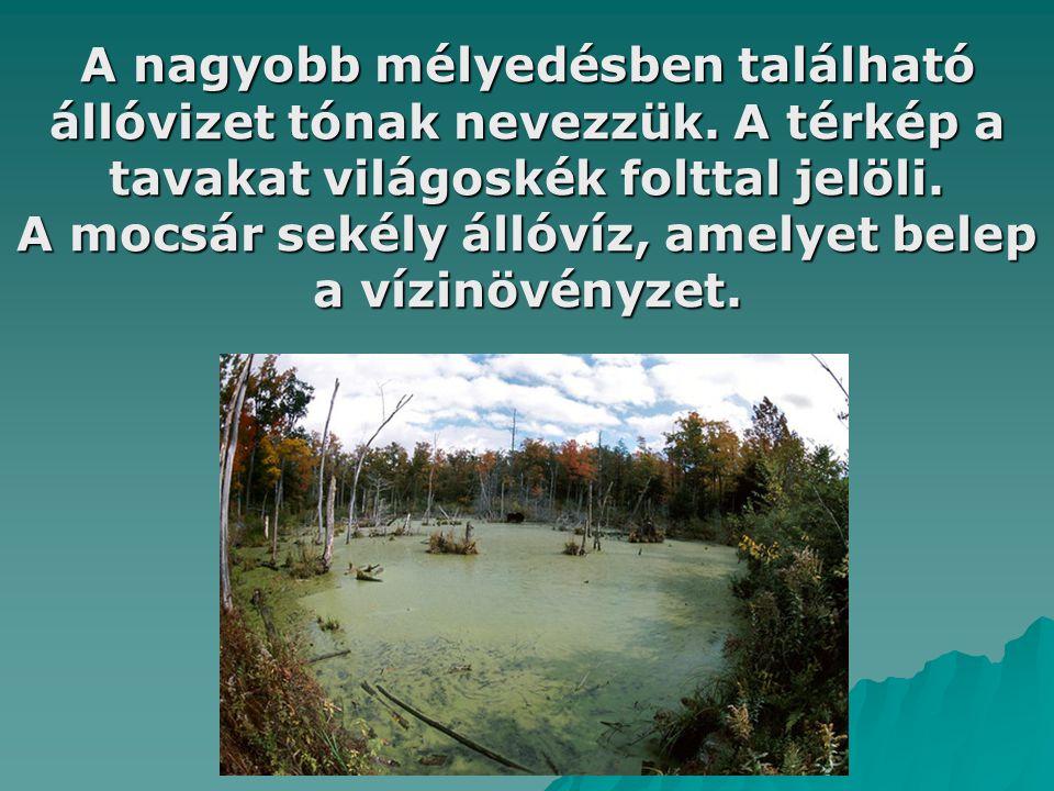 A nagyobb mélyedésben található állóvizet tónak nevezzük. A térkép a tavakat világoskék folttal jelöli. A mocsár sekély állóvíz, amelyet belep a vízin