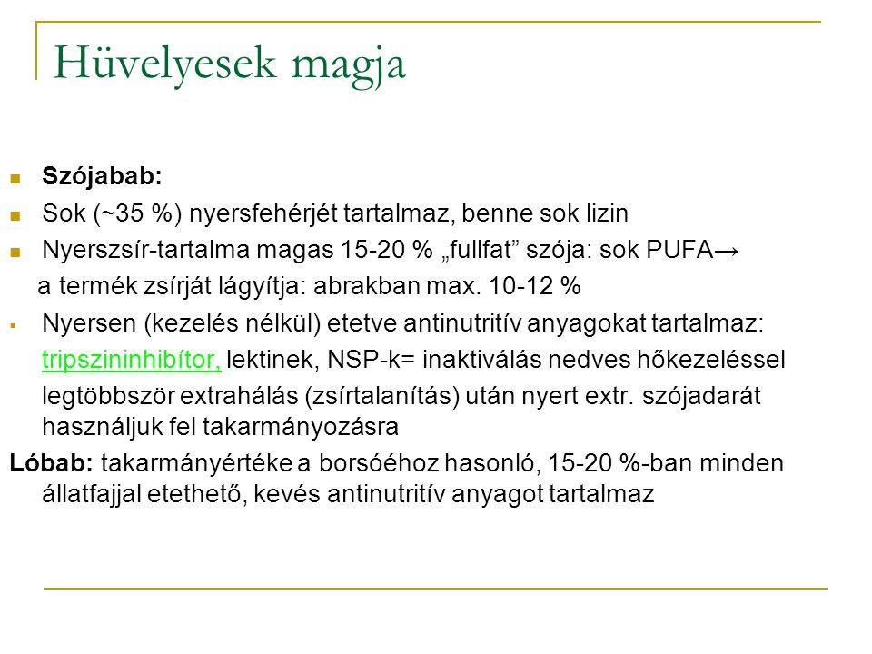 """Hüvelyesek magja Szójabab: Sok (~35 %) nyersfehérjét tartalmaz, benne sok lizin Nyerszsír-tartalma magas 15-20 % """"fullfat szója: sok PUFA→ a termék zsírját lágyítja: abrakban max."""
