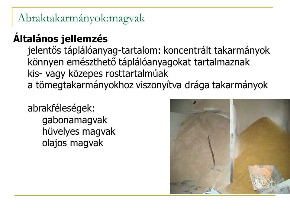 Abraktakarmányok:magvak Általános jellemzés jelentős táplálóanyag-tartalom: koncentrált takarmányok könnyen emészthető táplálóanyagokat tartalmaznak kis- vagy közepes rosttartalmúak a tömegtakarmányokhoz viszonyítva drága takarmányok abrakféleségek: gabonamagvak hüvelyes magvak olajos magvak