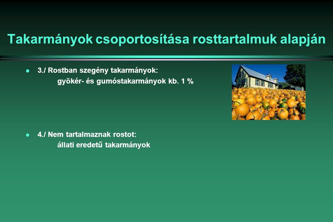 Takarmányok csoportosítása rosttartalmuk alapján l 3./ Rostban szegény takarmányok: gyökér- és gumóstakarmányok kb.