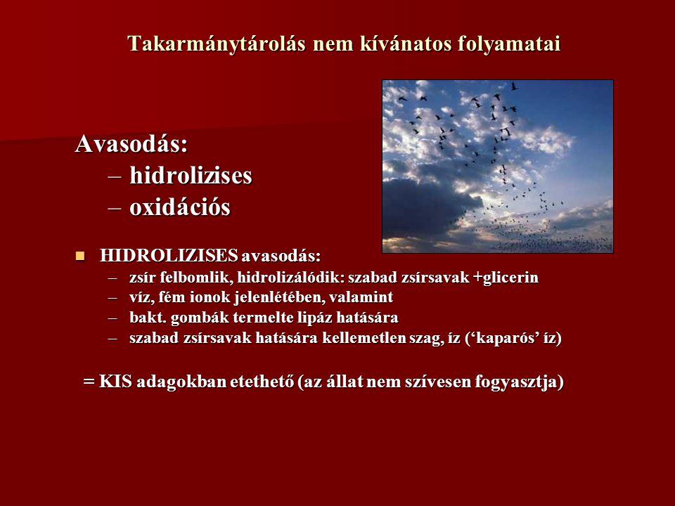 Takarmánytárolás nem kívánatos folyamatai Avasodás: –hidrolizises –oxidációs HIDROLIZISES avasodás: HIDROLIZISES avasodás: –zsír felbomlik, hidrolizál