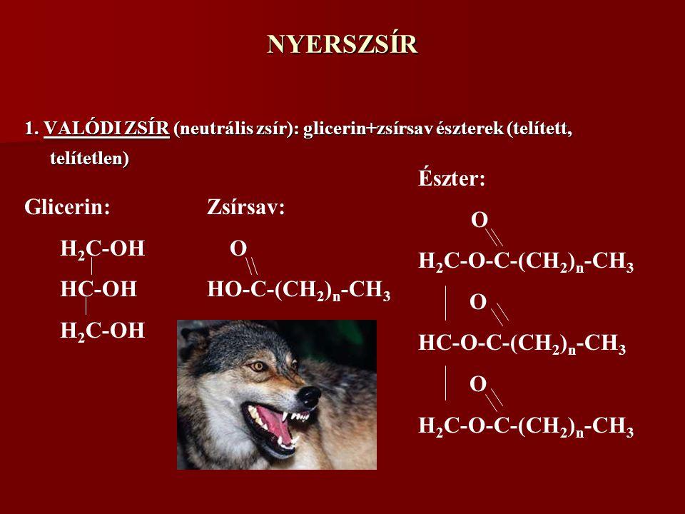 NYERSZSÍR 1. VALÓDI ZSÍR (neutrális zsír): glicerin+zsírsav észterek (telített, telítetlen) Glicerin: H 2 C-OH HC-OH H 2 C-OH Észter: O H 2 C-O-C-(CH