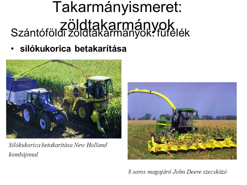Takarmányismeret: zöldtakarmányok Szántóföldi zöldtakarmányok: fűfélék silókukorica betakarítása Silókukorica betakarítása New Holland kombájnnal 8 so
