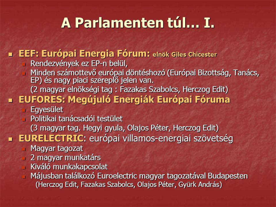 A Parlamenten túl… I. EEF: Európai Energia Fórum: elnök Giles Chicester EEF: Európai Energia Fórum: elnök Giles Chicester Rendezvények ez EP-n belül,
