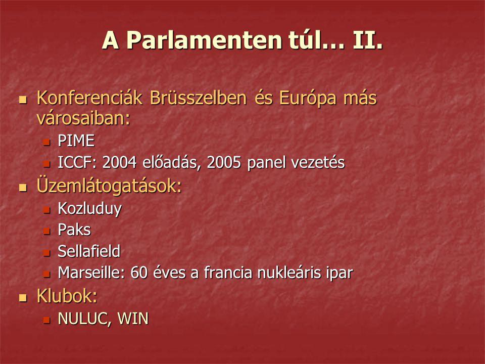 A Parlamenten túl… II. Konferenciák Brüsszelben és Európa más városaiban: Konferenciák Brüsszelben és Európa más városaiban: PIME PIME ICCF: 2004 előa