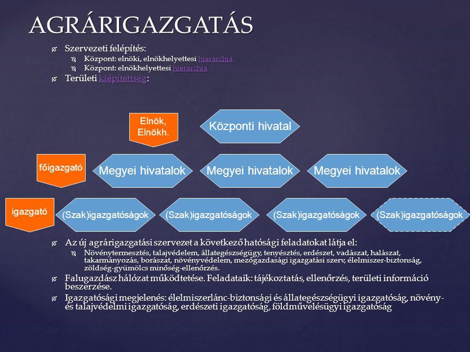  Szervezeti felépítés:  Központ: elnöki, elnökhelyettesi hierarchia hierarchia  Központ: elnökhelyettesi hierarchia hierarchia  Területi kiépített