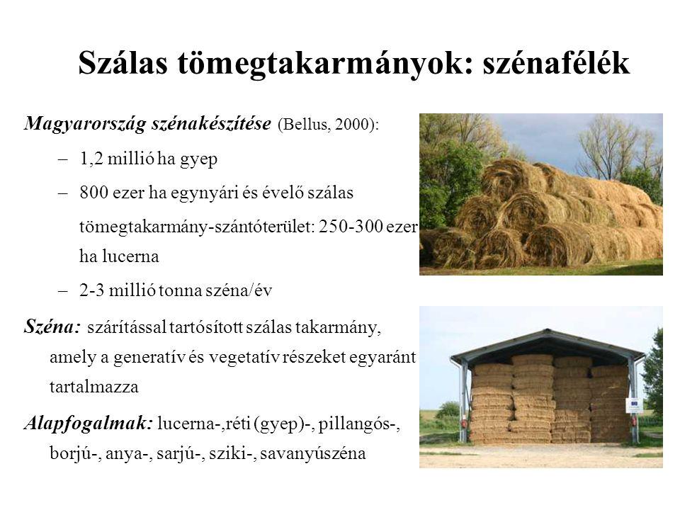 Magyarország szénakészítése (Bellus, 2000): –1,2 millió ha gyep –800 ezer ha egynyári és évelő szálas tömegtakarmány-szántóterület: 250-300 ezer ha lucerna –2-3 millió tonna széna/év Széna: szárítással tartósított szálas takarmány, amely a generatív és vegetatív részeket egyaránt tartalmazza Alapfogalmak: lucerna-,réti (gyep)-, pillangós-, borjú-, anya-, sarjú-, sziki-, savanyúszéna Szálas tömegtakarmányok: szénafélék