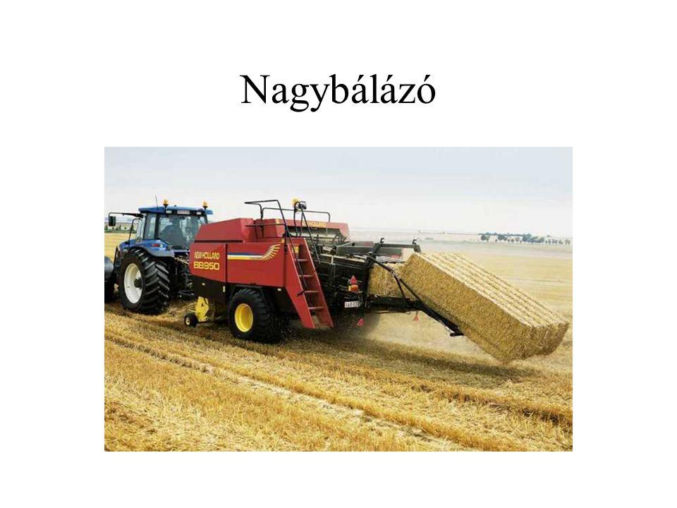 Takarmányismeret: gyökér-, gumós takarmányok Általános jellemzés –szántóföldön termesztett, nagy tömeget adó takarmányok –nagy nedvességtartalmú takarmányok (80-90% nedvességtartalom) –fehérjében, zsírban és rostban szegény takarmányok –keményítőben (burgonya) és cukrokban (répafélék) gazdag takarmányok –laktagóg hatásúak –könnyen emészthetők –nehezen tárolhatók nagy víztartalmuk miatt (prizma) –etetés előtt mosni, aprítani kell –gyökér-, gumós és kabakos takarmányok: burgonya, takarmányrépa, cukorrépa, murok (sárga-) répa, tökfélék