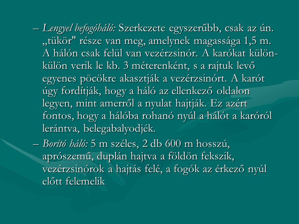 """–Lengyel befogóháló: Szerkezete egyszerűbb, csak az ún. """"tükör"""