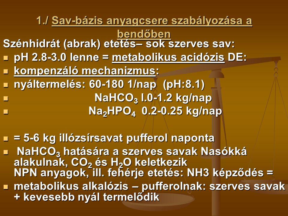 2./ A vér sav-bázis anyagcseréje A vér pH értéke: 7.4 (7.35-7.45) már kisfokú pH eltolódás gátolja s sejtek anyagcsere folyamatait Fenntartását biztosítja: Fenntartását biztosítja: 2.1./ A vér pufferrendszerei 2.1./ A vér pufferrendszerei 2.2./ A tüdő működése 2.2./ A tüdő működése 2.3./ A vese kiválasztó tevékenysége 2.3./ A vese kiválasztó tevékenysége 2.1./ Pufferrendszerek: hidrogénkarbonát/szénsav rendszer (leghatékonyabb): hidrogénkarbonát/szénsav rendszer (leghatékonyabb): Extracelluláris folyamatokban a savakat teljesen el tudja távolítani a szervezetből, szénsavvá alakulnak, majd CO2 és víz formájában kiürülnek