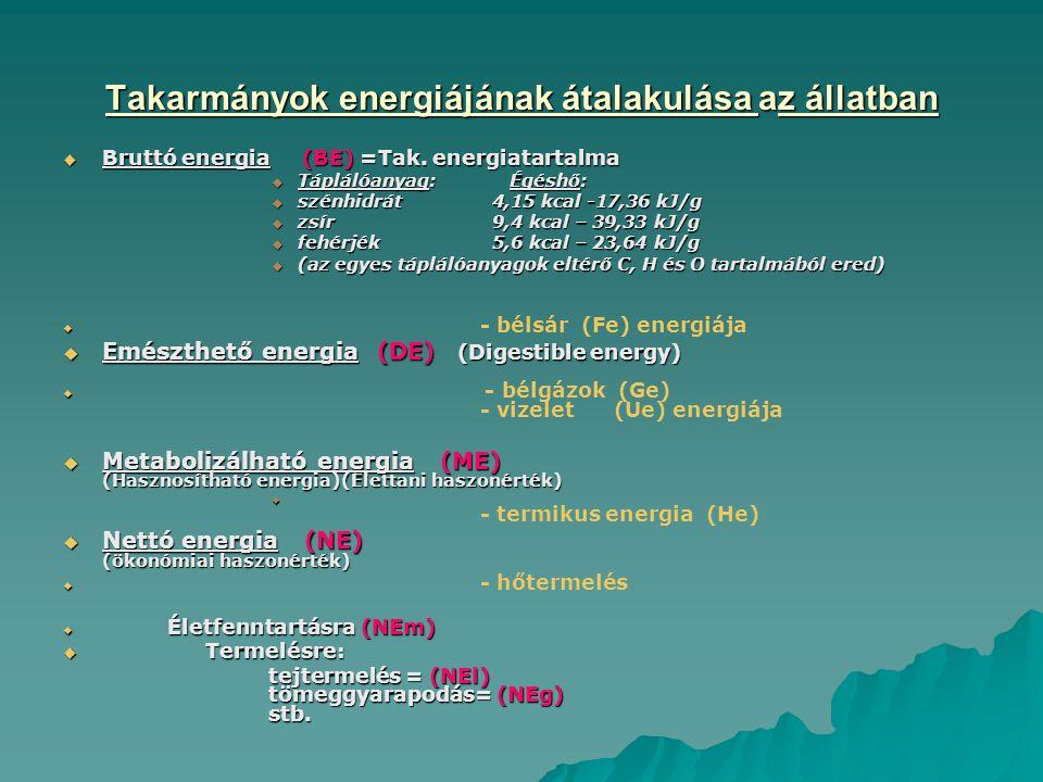 Takarmányok energiájának átalakulása az állatban  Bruttó energia (BE) =Tak.