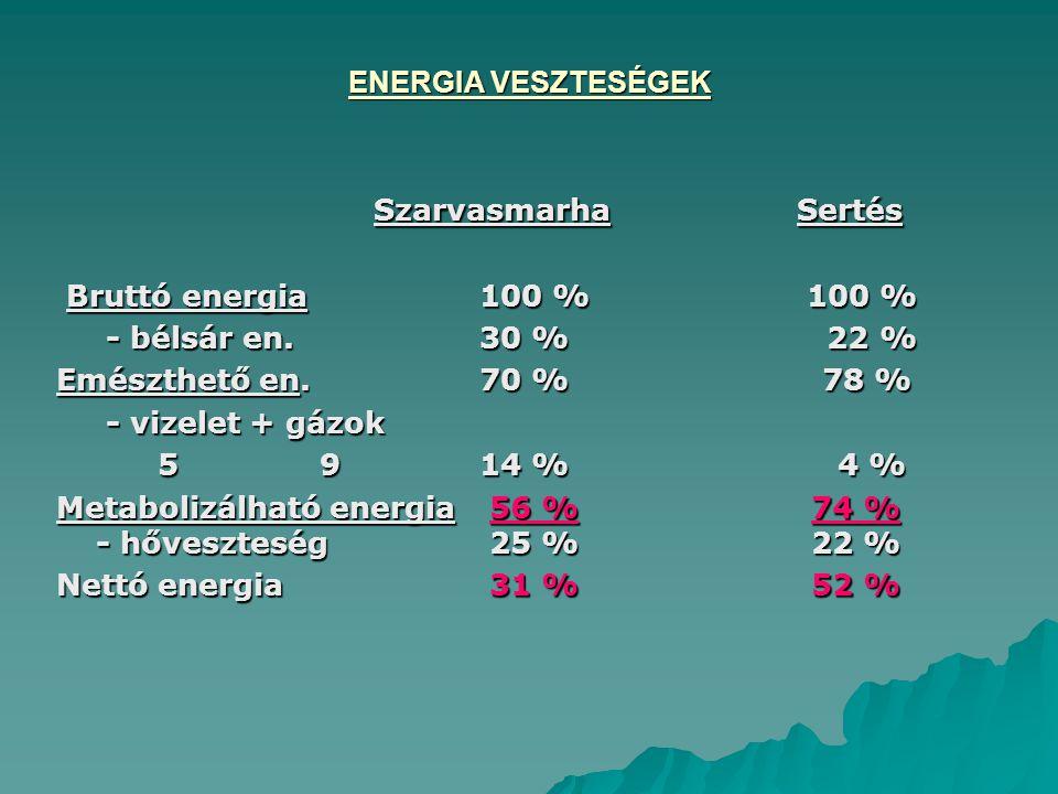 ENERGIA VESZTESÉGEK SzarvasmarhaSertés Bruttó energia100 % 100 % Bruttó energia100 % 100 % - bélsár en.30 % 22 % - bélsár en.30 % 22 % Emészthető en.70 % 78 % - vizelet + gázok - vizelet + gázok 5 9 14 % 4 % 5 9 14 % 4 % Metabolizálható energia 56 % 74 % - hőveszteség 25 % 22 % Nettó energia 31 % 52 %