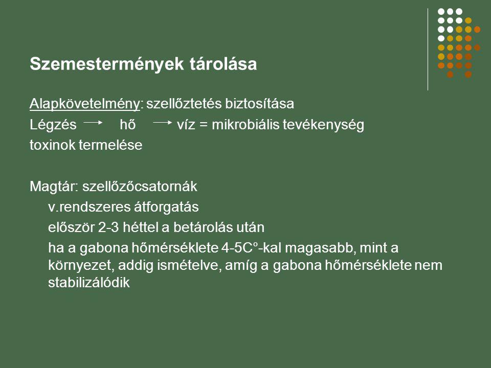 Szemestermények tárolása Alapkövetelmény: szellőztetés biztosítása Légzés hő víz = mikrobiális tevékenység toxinok termelése Magtár: szellőzőcsatornák