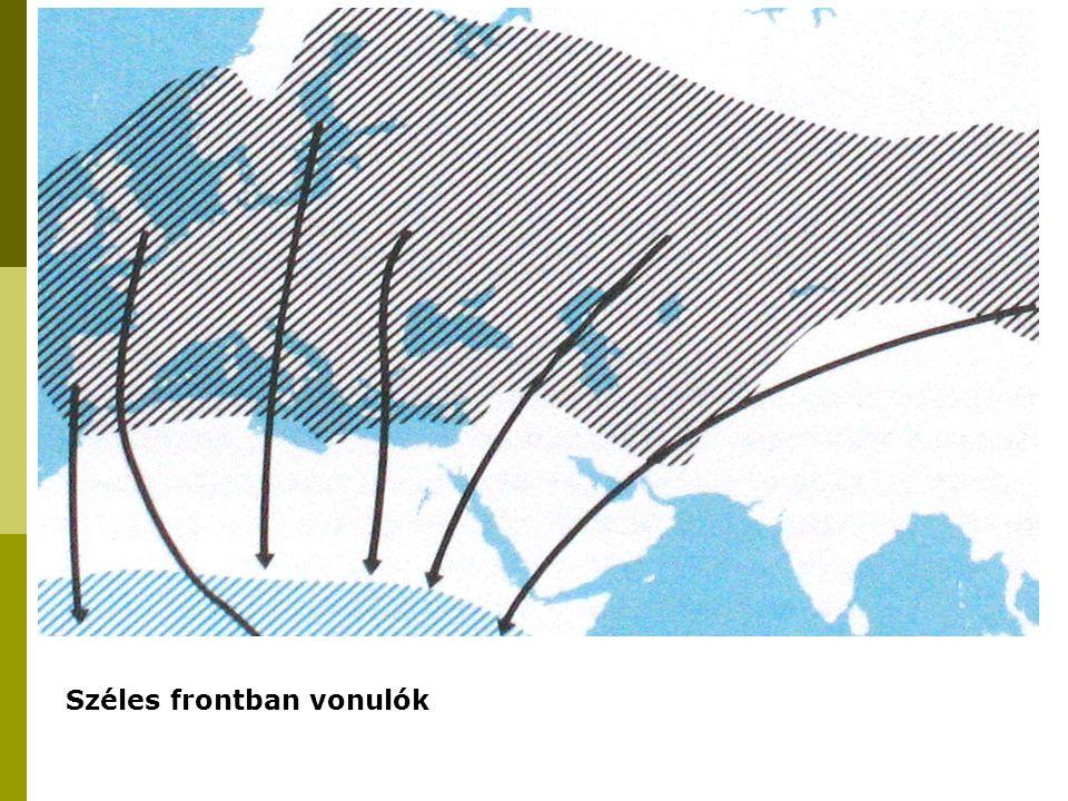"""Morfológiai adottságok, repülési módok és hatásuk a vonulási mintázatra A vitorlázórepülés kettős hullámvonala siklás szárny- csapás Nagy energiaigény Mellizomzat korlátozott mérete Kiváltható: környezeti """"emelőerők"""