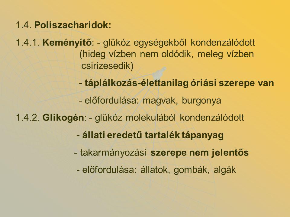 1.4.Poliszacharidok: 1.4.1.
