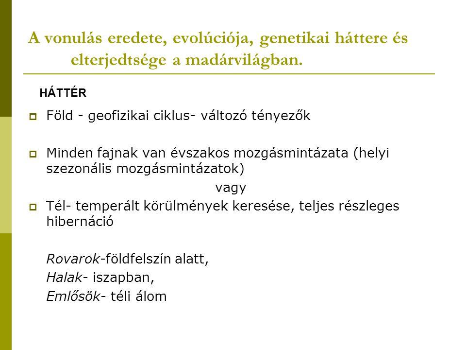 A vonulás eredete, evolúciója, genetikai háttere és elterjedtsége a madárvilágban.