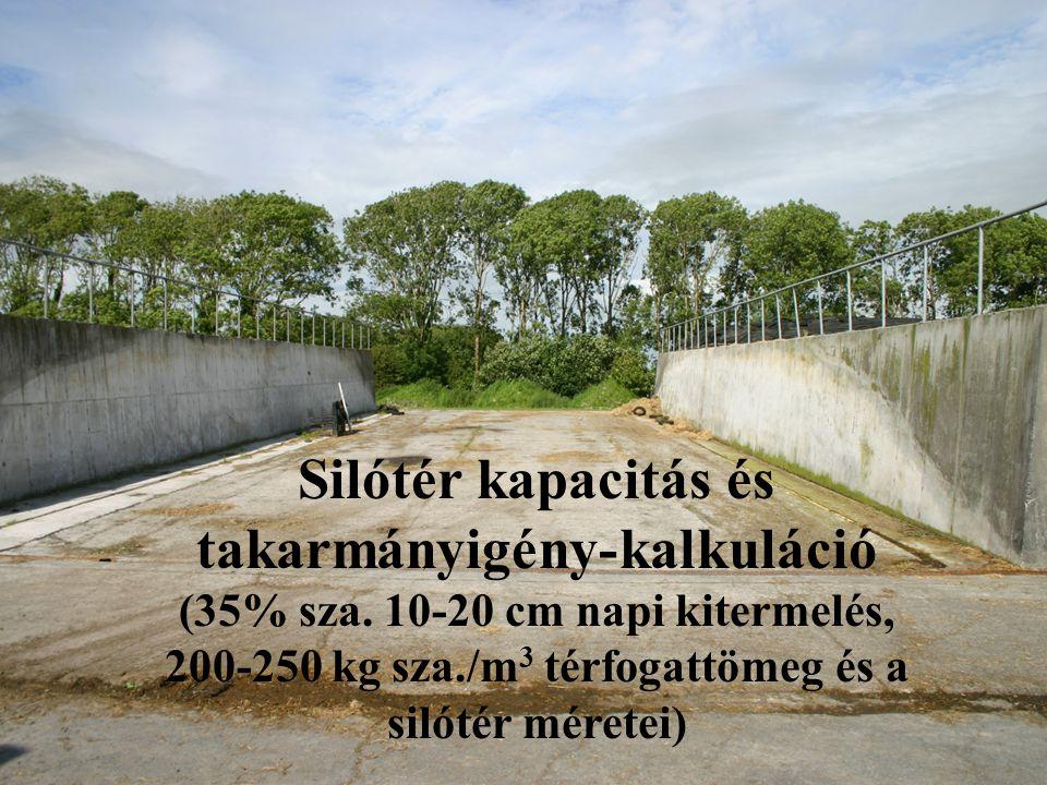 Silótér kapacitás és takarmányigény-kalkuláció (35% sza. 10-20 cm napi kitermelés, 200-250 kg sza./m 3 térfogattömeg és a silótér méretei)
