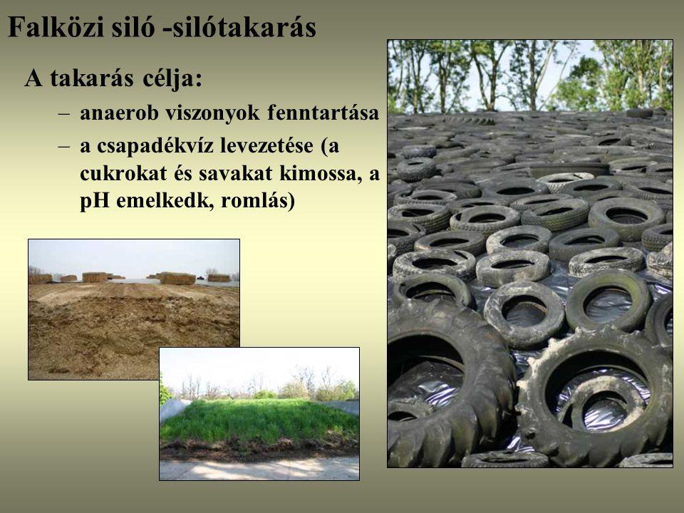 Falközi siló -silótakarás A takarás célja: –anaerob viszonyok fenntartása –a csapadékvíz levezetése (a cukrokat és savakat kimossa, a pH emelkedk, rom