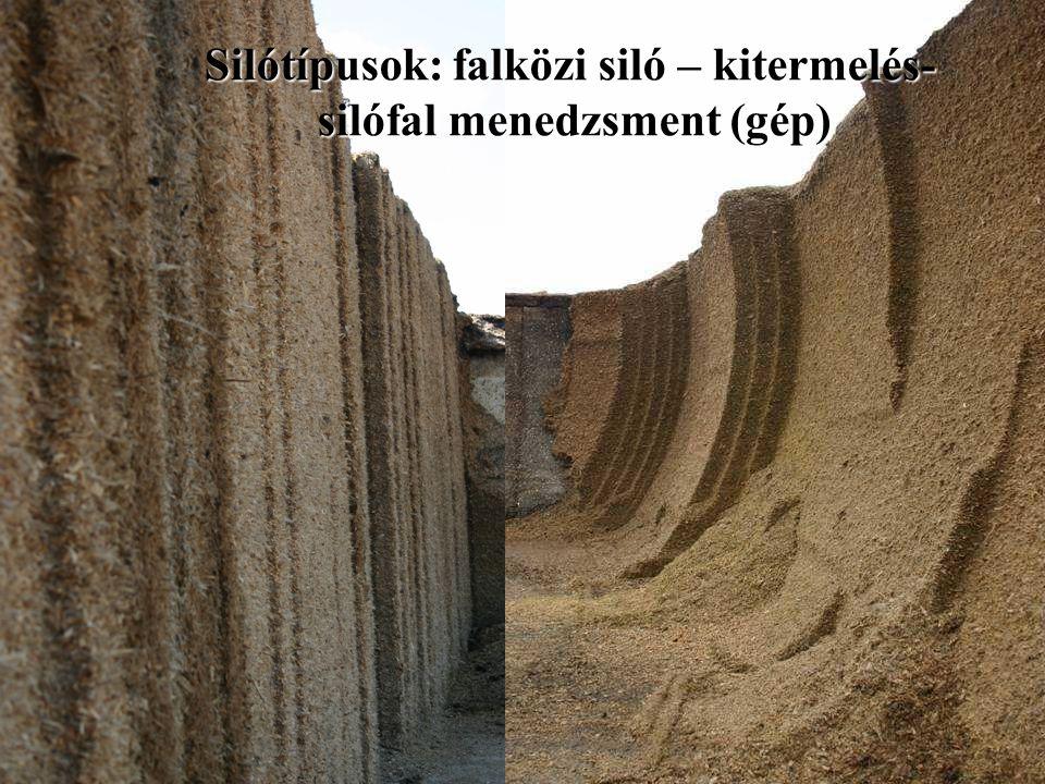 Silótípusok: falközi siló – kitermelés- silófal menedzsment (gép)