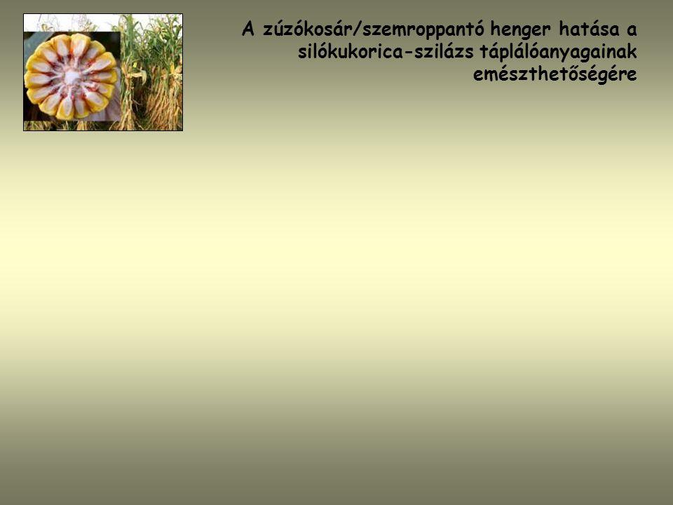 A zúzókosár/szemroppantó henger hatása a silókukorica-szilázs táplálóanyagainak emészthetőségére