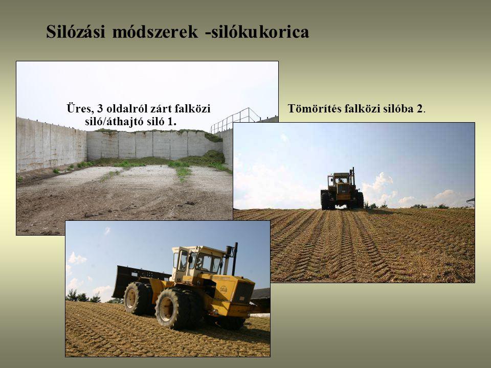 Silózási módszerek -silókukorica Üres, 3 oldalról zárt falközi siló/áthajtó siló 1. Tömörítés falközi silóba 2.