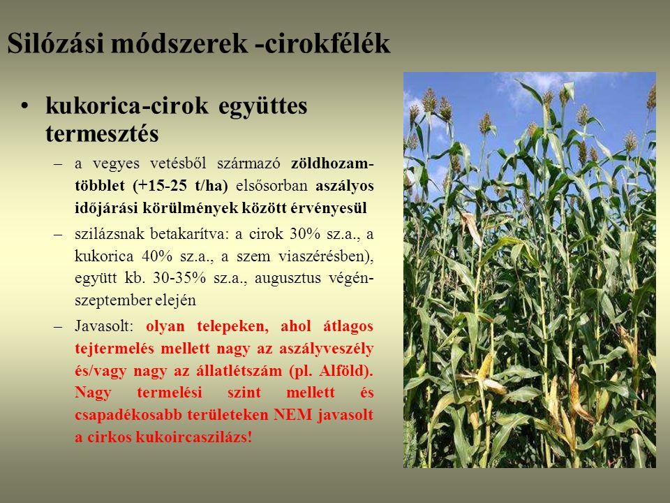 kukorica-cirok együttes termesztés –a vegyes vetésből származó zöldhozam- többlet (+15-25 t/ha) elsősorban aszályos időjárási körülmények között érvén