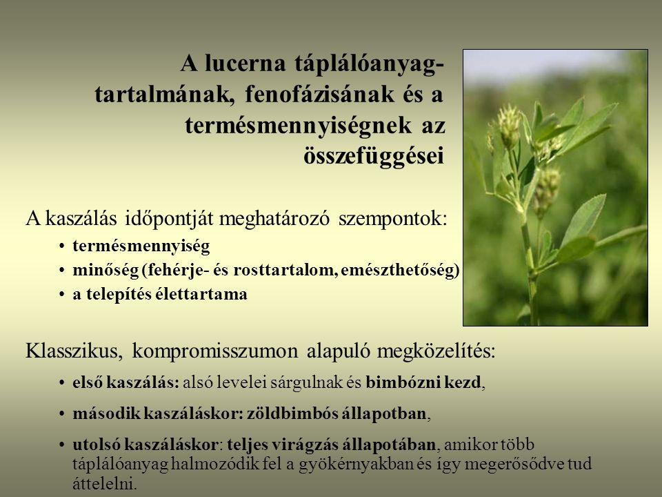 A lucerna táplálóanyag- tartalmának, fenofázisának és a termésmennyiségnek az összefüggései A kaszálás időpontját meghatározó szempontok: termésmennyi