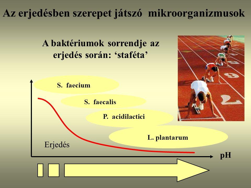 pH S. faecium S. faecalisP. acidilactici L. plantarum Erjedés A baktériumok sorrendje az erjedés során: 'staféta' Az erjedésben szerepet játszó mikroo