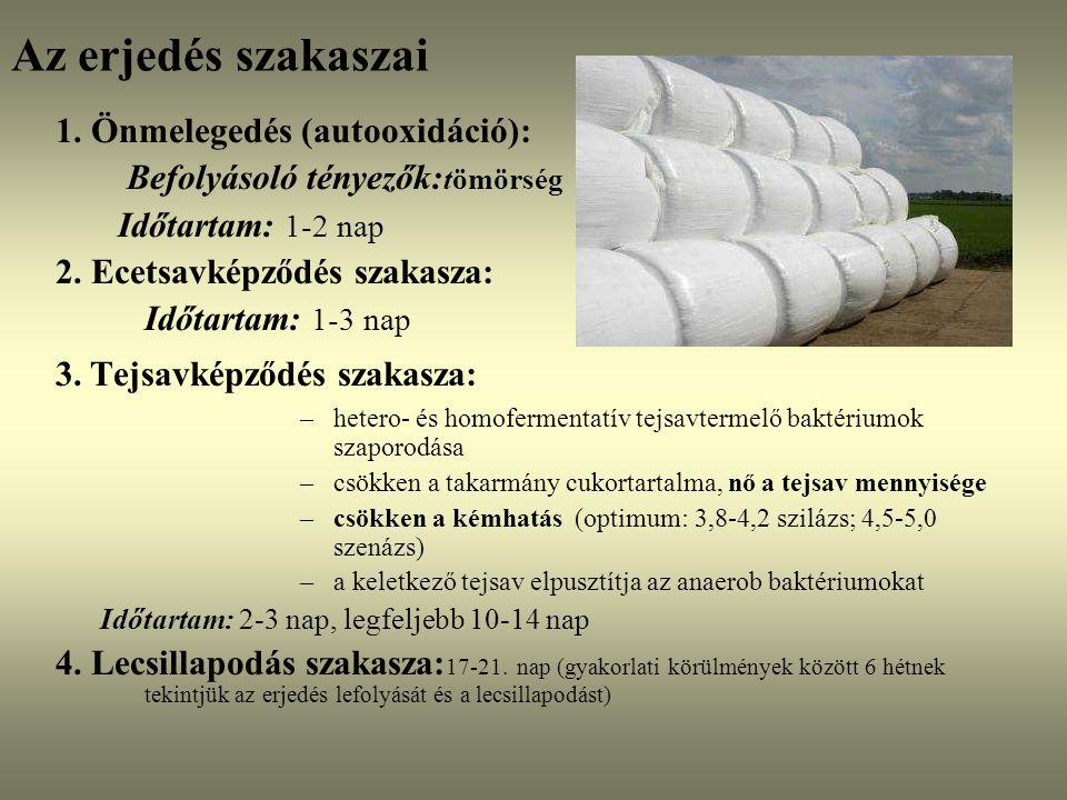 Az erjedés szakaszai 1. Önmelegedés (autooxidáció): Befolyásoló tényezők: tömörség Időtartam: 1-2 nap 2. Ecetsavképződés szakasza: Időtartam: 1-3 nap