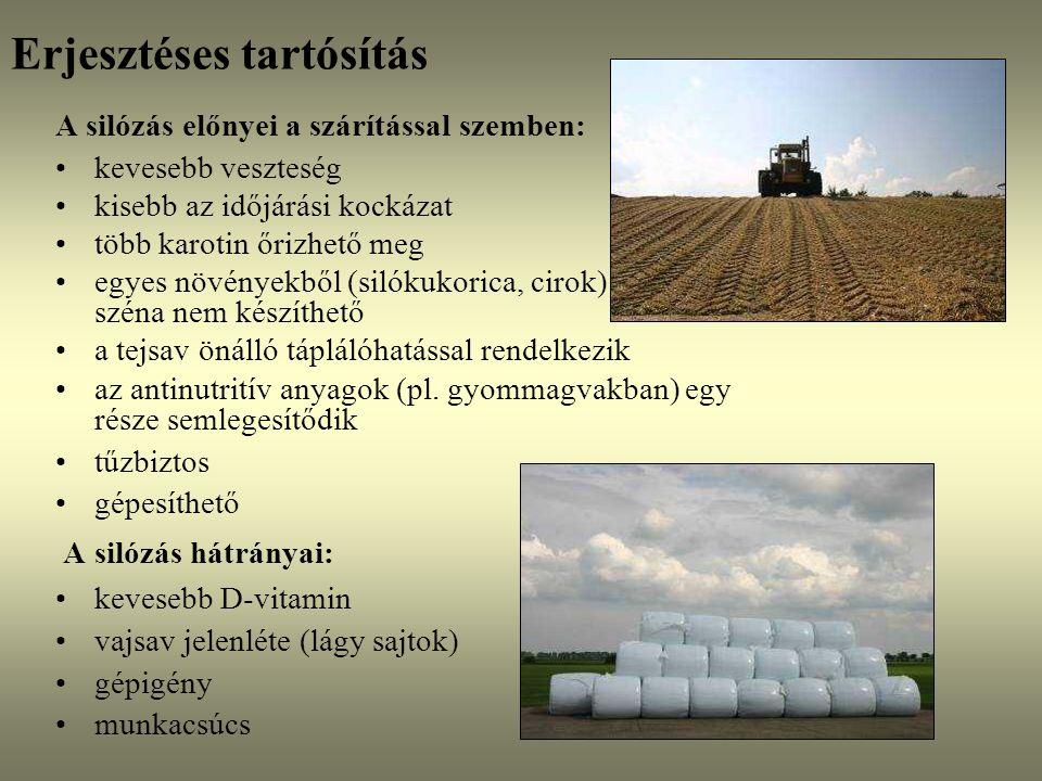 Erjesztéses tartósítás Alapfogalmak: silózás: tömörítés, anaerob körülmények, mikroorganizmusok,szerves savak, csökkenő kémhatás szilázs: egy menetben betakarított növényből készített erjesztett tömegtakarmány, kukoricaszilázs: 35-40% sz.a-tart., lucernaszilázs: 25-30% fonnyasztott szilázs: két menetben betakarított fonnyasztott fűből vagy lucernából készített tömegtakarmány, 30-40% szárazanyag- tartalommal szenázs: két menetben betakarított, fonnyasztott fűből vagy lucernából készített tömegtakarmány, ált.